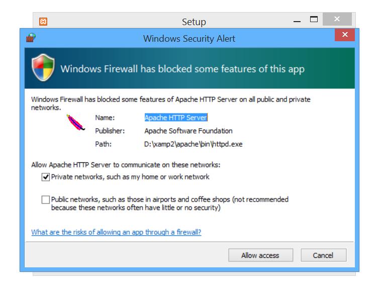 Windows Firewall Security Alert